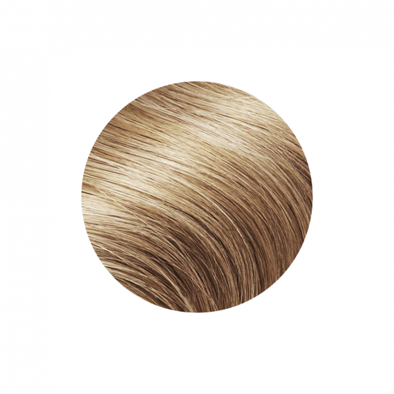 "Ponytail Light Brown Color 9C - Silver Line (22"" inch)"
