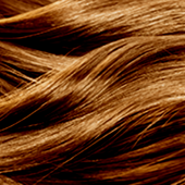 7.73 MEDIUM BROWN GOLD BLONDE